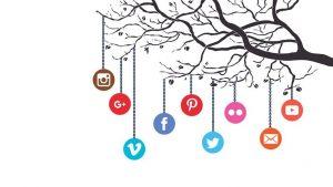 social media marketing training institute