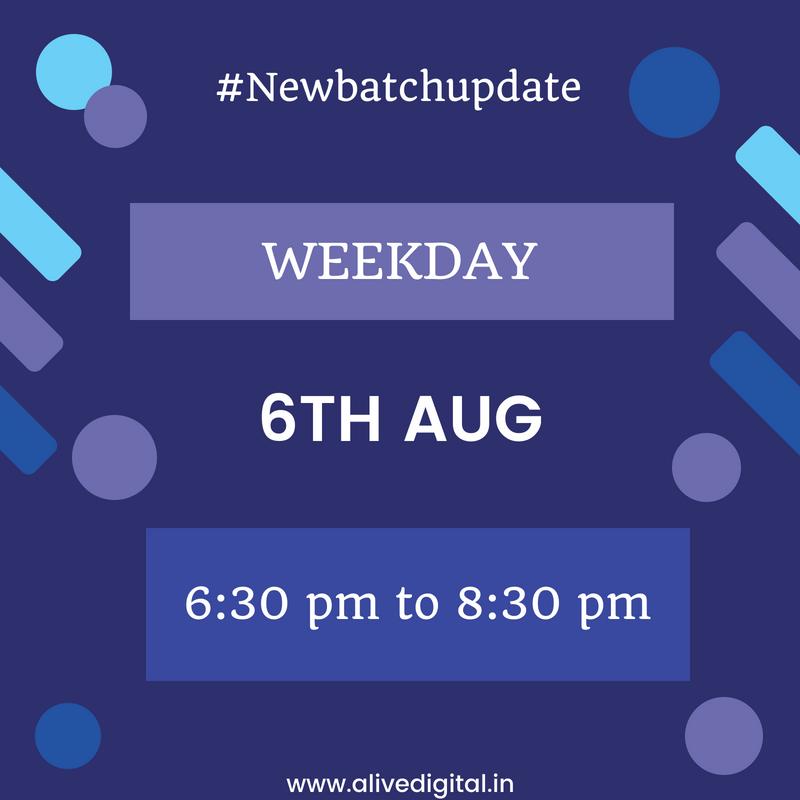 New Batch Update (Aug)